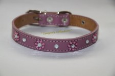 zc-dogbows-collar-m-284